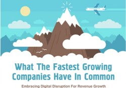 What_The_Fastest_Growing_Companies_Have_In_Common__Infographic____Social_Selling_Masters_Course